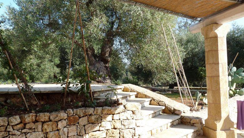 thumb_403_p1190562.jpg veranda coperta